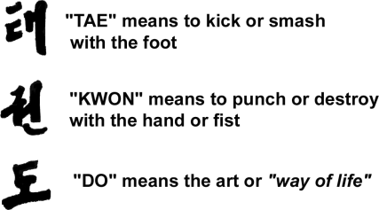 tae kwon do meaning