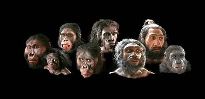 Ανθρωπινη Εξελιξη